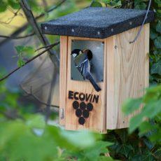 Wie wird Biowein zertifiziert? ECOVIN Logo?