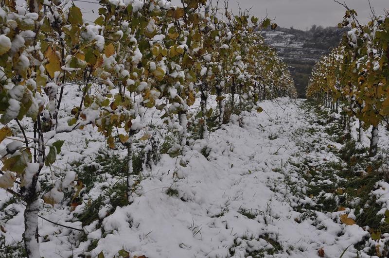 Schnee am 27.10.2012